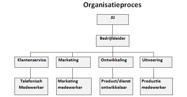 organisatieproces